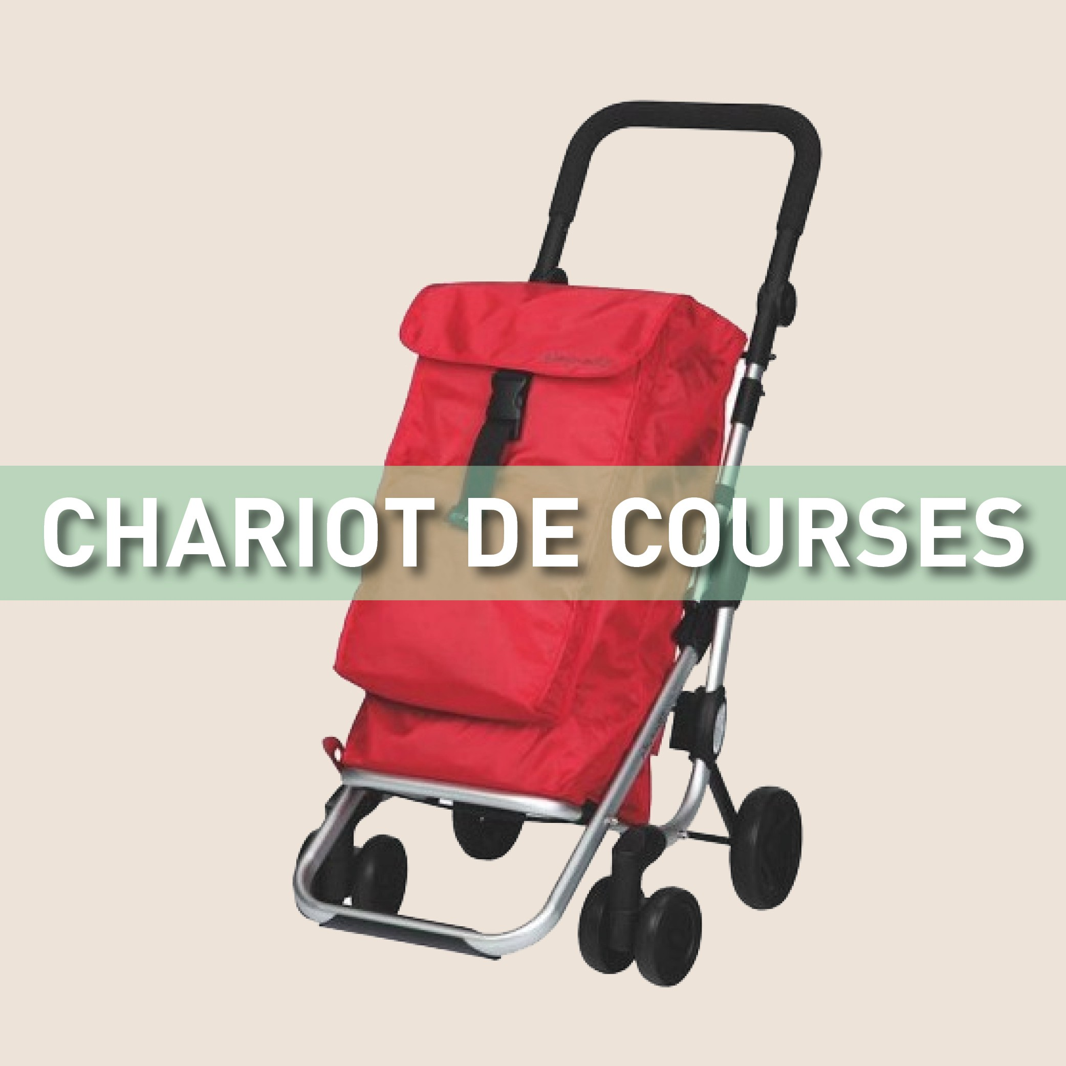 Chariot de courses